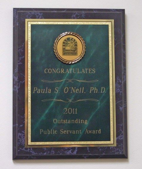 2011 Outstanding Public Servant Award